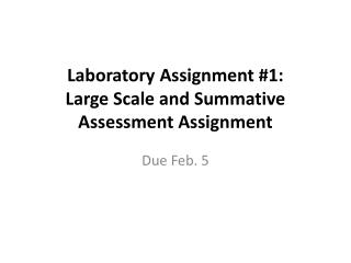 Laboratory Assignment #1:  Large  Scale and Summative Assessment Assignment