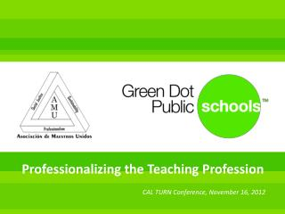 Professionalizing the Teaching Profession