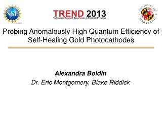 Probing Anomalously High Quantum Efficiency of Self-Healing Gold  Photocathodes