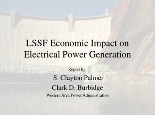 LSSF Economic Impact on Electrical Power Generation