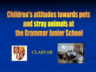 Children's attitudes towards pets  and stray animals at  the Grammar Junior School