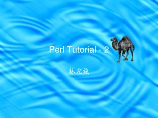Perl Tutorial - 2