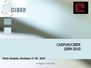 CASPUR/CIBER 2009-2010