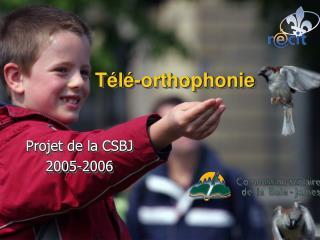 Télé-orthophonie
