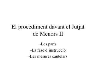 El procediment davant el Jutjat de Menors II