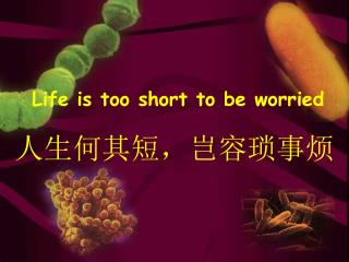 Life is too short to be worried