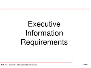 Executive Information Requirements