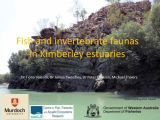 Fish and invertebrate faunas in Kimberley estuaries