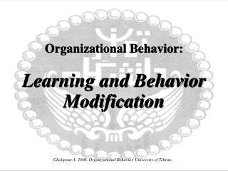 Organizational Behavior: Learning and Behavior Modification