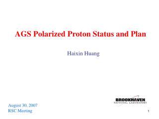 AGS Polarized Proton Status and Plan