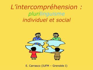 L intercompr hension : plurilinguisme individuel et social