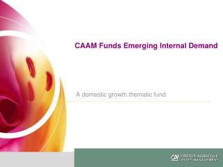 CAAM Funds Emerging Internal Demand  A domestic growth thematic fund