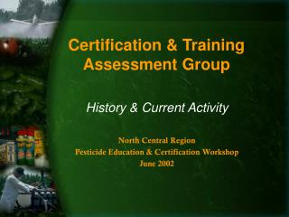 Certification & Training Assessment Group