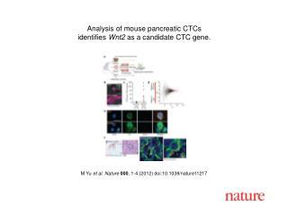 M Yu  et al. Nature 000 ,  1-4  (2012) doi:10.1038/nature11217
