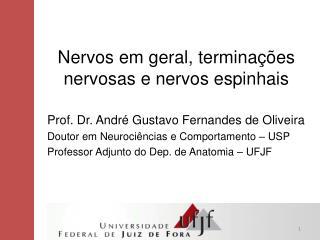 Nervos em geral, terminações nervosas e nervos espinhais