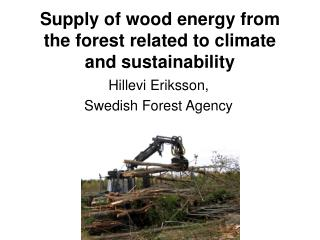 Supply of wood energy from the forest related to climate and sustainability