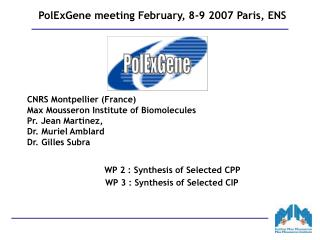 PolExGene meeting February, 8-9 2007 Paris, ENS