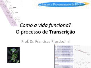 Como a vida funciona? O processo de  Transcri��o