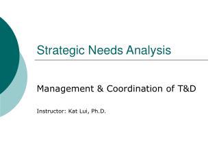 Strategic Needs Analysis