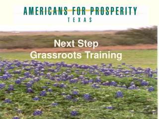 Next Step Grassroots Training