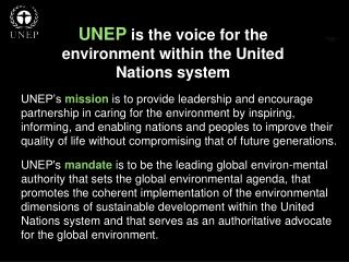 UNEP  is the voice for the environment within the United Nations system