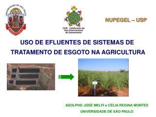 USO DE EFLUENTES DE SISTEMAS DE  TRATAMENTO DE ESGOTO NA AGRICULTURA