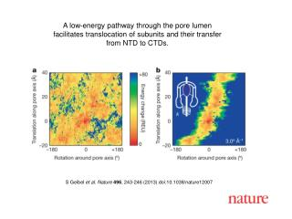 S Geibel  et al. Nature 496 , 243-246 (2013) doi:10.1038/nature12007