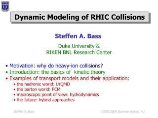 Dynamic Modeling of RHIC Collisions