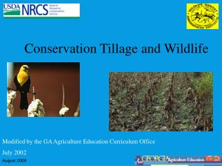 Conservation Tillage and Wildlife