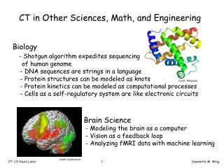 CT in Other Sciences, Math, and Engineering