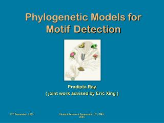 Phylogenetic Models for Motif Detection