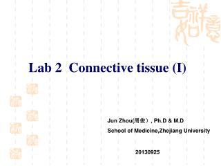 Lab 2  Connective tissue (I)