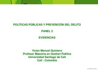 POLÍTICAS PÚBLICAS Y PREVENCIÓN DEL DELITO PANEL 5