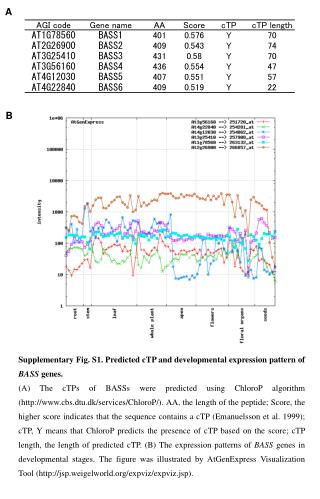 Supplementary Fig. S1. Predicted cTP and developmental expression pattern of  BASS  genes.