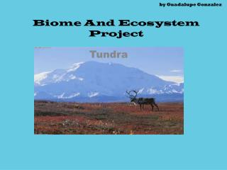 by Guadalupe Gonzalez Biome And Ecosystem Project