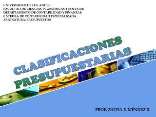 CLASIFICACIONES  PRESUPUESTARIAS