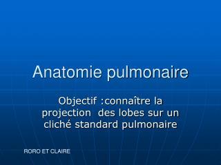 Anatomie pulmonaire