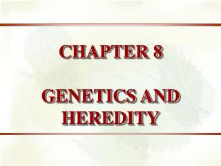 Chapter 8 - Patterns of Inheritance