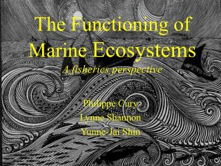 The Functioning of Marine  Ecosystems A fisheries perspective