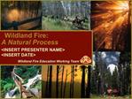 Wildland Fire:  A Natural Process