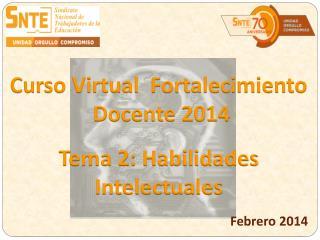 Curso Virtual  Fortalecimiento  Docente 2014
