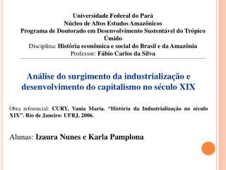 Análise do surgimento da industrialização e desenvolvimento do capitalismo no século XIX