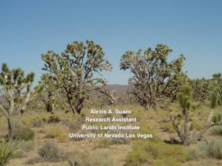Alexis A. Suazo Research Assistant Public Lands Institute University of Nevada Las Vegas