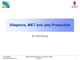 Dileptons, MET and Jets Production