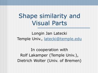 Shape similarity and Visual Parts
