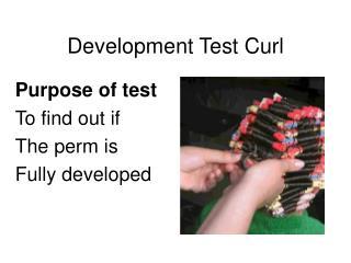 Development Test Curl