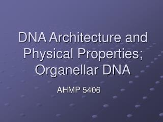 DNA Architecture and Physical Properties; Organellar DNA