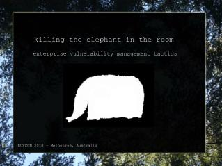 killing the elephant in the room   enterprise vulnerability management tactics