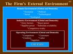 The  Firm s  External  Environment