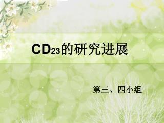 CD 23 的研究进展